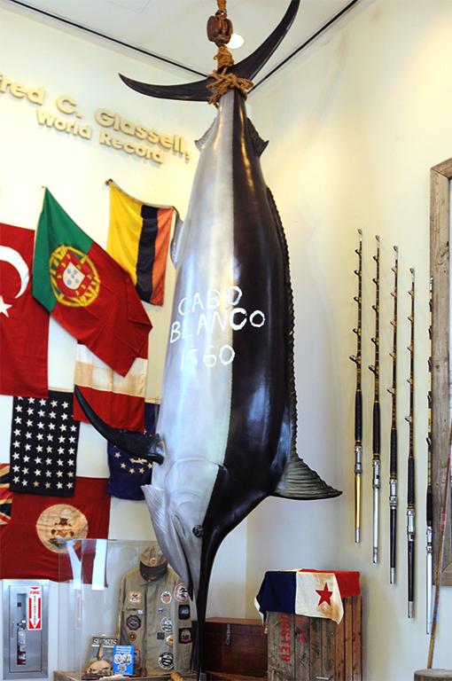 ロビーの中には、ペルーのカボ・ブランコで釣れた世界記録のシロカジキのレプリカが! 圧倒的迫力です